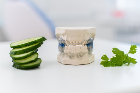 ceramic jaws with a staple lie with a sliced cucumber on the table