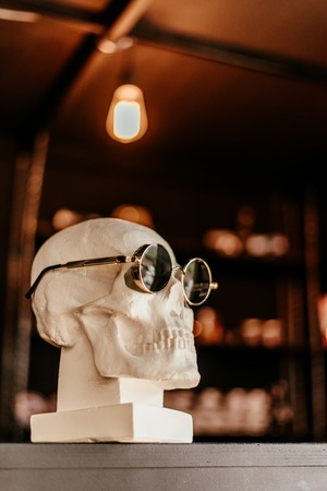 skull in sunglasses is on the shelf Banque d'images - 123972310
