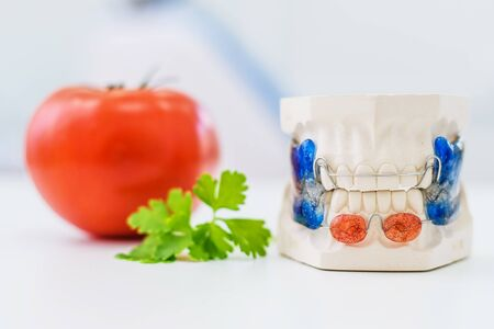 artificial jaws with a clasp lie next to a tomato on a table