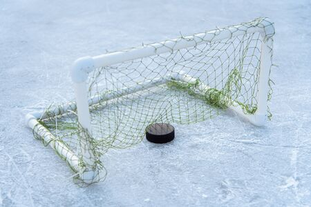 Hockey puck in goal at the stadium