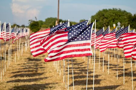 Rows of USA flags are displayed on national holidays in the United States of America. Фото со стока