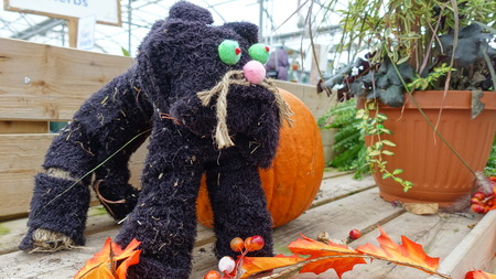 Kitty Kat Scarecrow In Gardening Center
