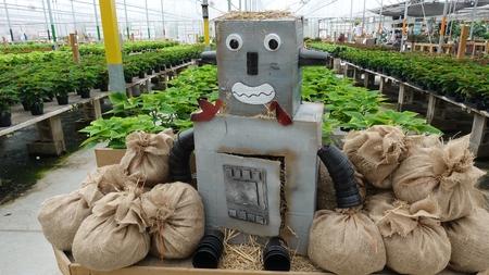 Robotic Robot Scarecrow In Gardening Center