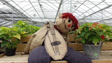 Espantapájaros tocando el banjo entre plantas