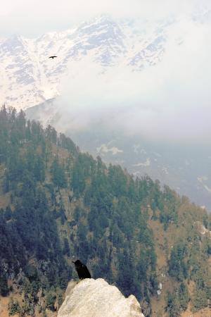 trecking: Himalayan Crown on the big Rock  India