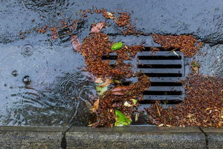 Street drain clogged by falling leaves and debris Stock Photo