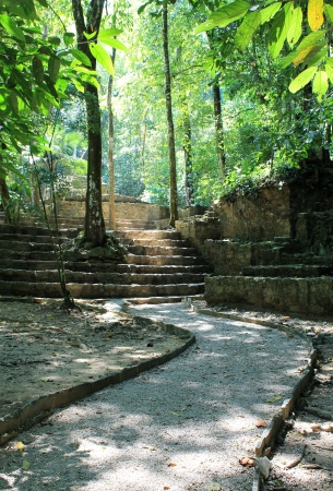 A pathway among the Mayan ruins at Palenque in Chiapas, Mexico Banco de Imagens
