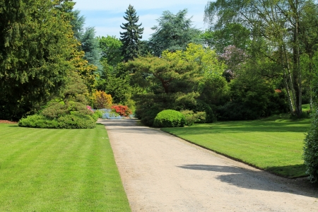 driveways: Looking down a meticulously manicured roadway in a Seattle park on a sunny day Stock Photo