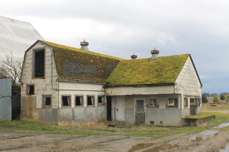 An abandoned dairy barn and milk house in rural Washington state Stock Photo
