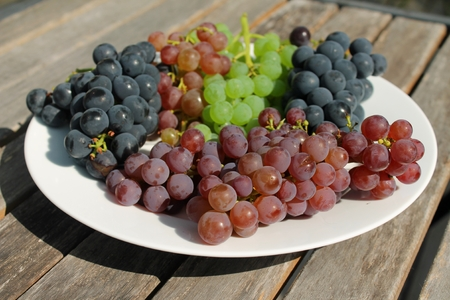 concord grape: Freshly harvested bunches of ripe red, purple, blue and green grapes on a white plate on rustic wooden table on a sunny day.