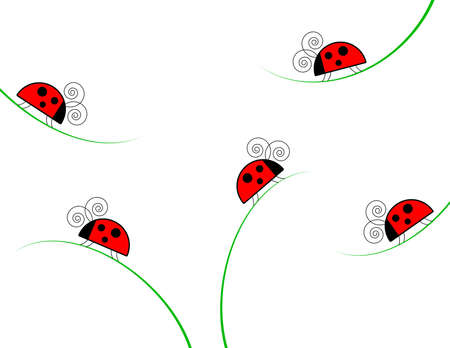 Ladybugs crawling on grass on white background Zdjęcie Seryjne