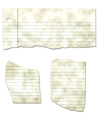 Ripped Looseleaf Paper Collection - Dirty