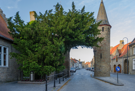 An ancient taxus baccata or European Yew tree stands beside the West Gate in the medieval town of Lo. The tree is a national monument of Belgium Stock Photo