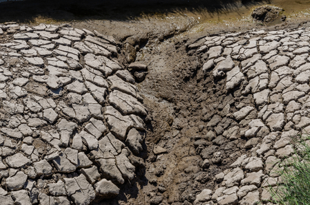 Cracked and dried mud of a river bank on a hout and sunny day Stockfoto