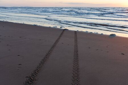Tracks left in the sand from a vehicle which has either entered or left the approaching sea. Фото со стока
