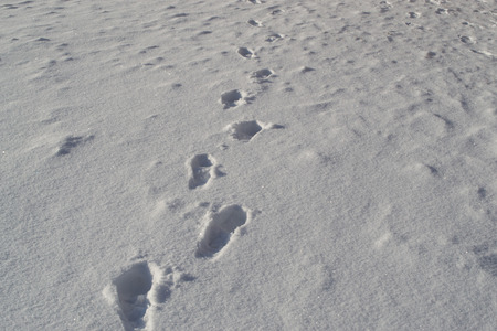 treads: Human treads and footprints in snow as the path begins Stock Photo