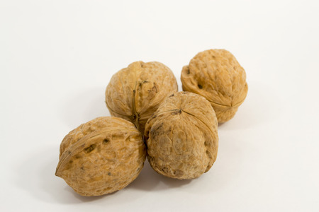 unopened: Four walnuts with sharp focus on a white simple clean background - unopened and still in their shells Stock Photo