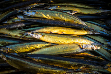 fish type: Local fish known as sparts at a traditional Fishmarket in Russia Stock Photo