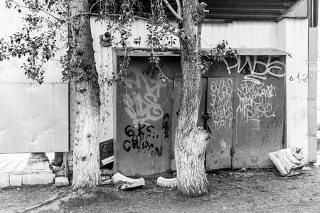 arbol de problemas: Rocíe cobertizo de metal y troncos de árboles cubiertos