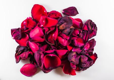onbeantwoorde: Oude en sterven rozenblaadjes met defocus gebieden op een witte achtergrond Stockfoto