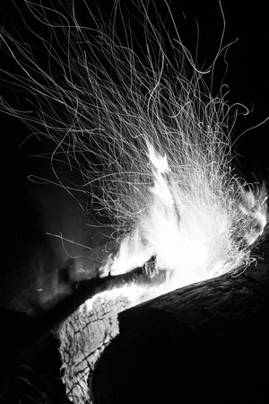 stoking: Sparks from a log burning campfire at night in black and white or monochrome