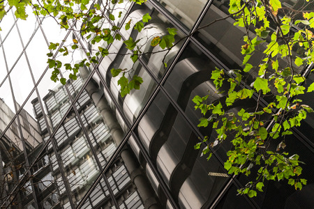 Futuristic modern building abstract with curving glass window reflections with green leaves in foreground with nobody visible