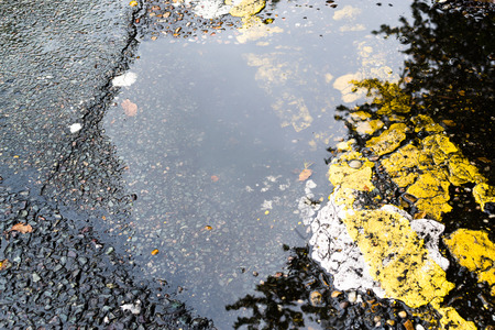 road surface: Puddle of water lies in broken asphalt with yellow paint and tree reflection