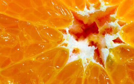 segmentar: Primer macro de un segmento de una naranja en rodajas satsuma