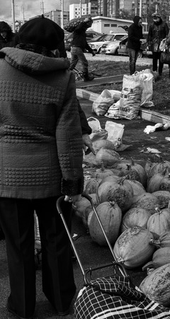 observant: 9102015 � Observant middle-aged woman shopper with a shoppers trolley looks at a pile of organic pumpkins before choosing which one to buy in a Russian Farmers market on the 9th of October 2015 Editorial