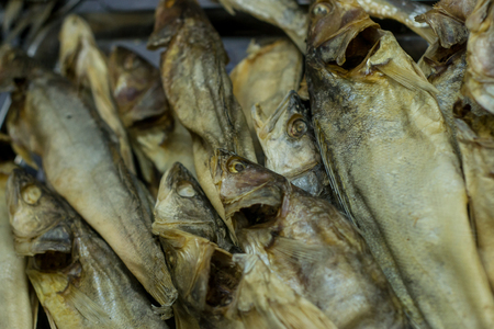 traditionally russian: Dried salted fish on display in a local Russian Beer shop. The fish is a snack when drinking and is traditionally bought together with Beer.