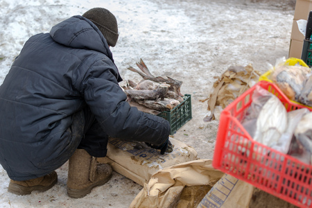 fishmonger: UFA, RUSSIA - NOVEMBER 12, 2015: A fishmonger works with freshly frozen fish preparing the seafood for sale at a local fish market stall in Ufa, Russia during November of 2015