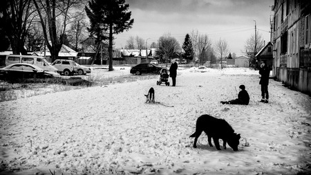 williams: UFA - RUSSIA 11TH DECEMBER 2015 - Young teenagers with their dogs wait in the winter snow of a Russian village as a grandmother with a buggy watches