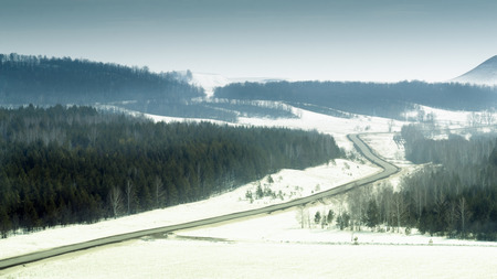 covered fields: Winter travel scene of a road going through a black forest with snow covered fields and plains. Colour Image in blue and black.