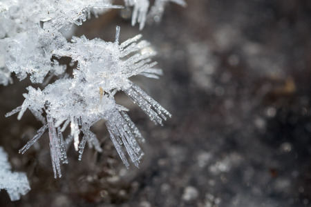 ice crystal: Ice crystal formation in closeup with a defocused background