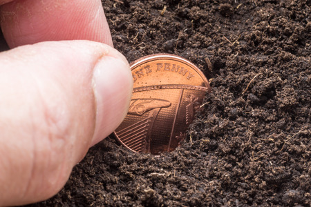 pence: Male hand sows a golden coloured English one pence coin in a pot of compost to make the money grow as a finance concept. Stock Photo