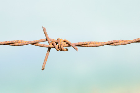 rust covered: Rust covered barbed wire fence with a blue empty background and copy space area