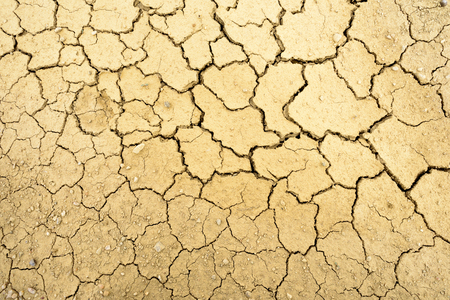 fissures: Dry mud with many cracks and fissures on the surface Stock Photo