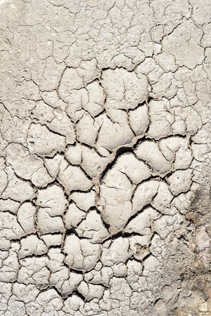 dearth: Dry mud texture of a dried riverbed due to excessive heat and drought conditions in the local environment.