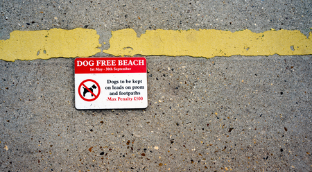 breaking the rules: No Dogs on the beach sign showing a penalty for breaking the rules.