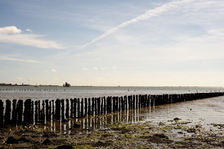Worn wooden sea defence posts at cudmore grove on mersea island in England with a low tide