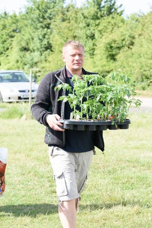 CHELMSFORD, ESSEX/ENGLAND - 1ST JUNE 2019 - A man  visiting a car boot sale in Boreham Essex and buying tomato plants seedlings during the summer of 2019