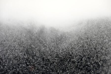 Artificially created snowstorm in black and white with defocused snowfall Zdjęcie Seryjne
