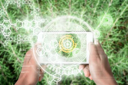 Augmented Reality device using smart technology, mixing virtual and augmentation reality through the application of artificial intelligence and computer AI tech assistance for botanical information and examination Zdjęcie Seryjne