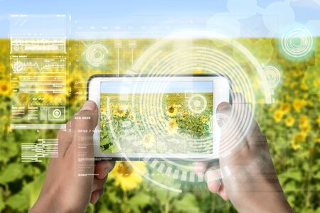 Augmented Reality device using smart technology, mixing virtual and augmentation reality through the application of artificial intelligence and computer AI tech assistance for agriculture and farming 版權商用圖片