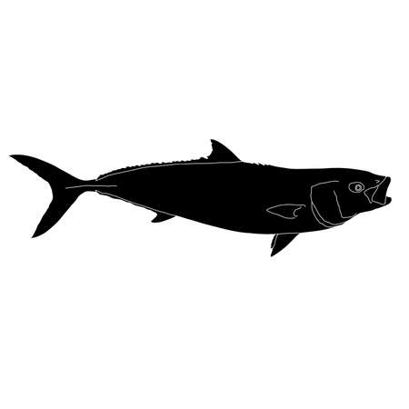 California yellowtail silhouette