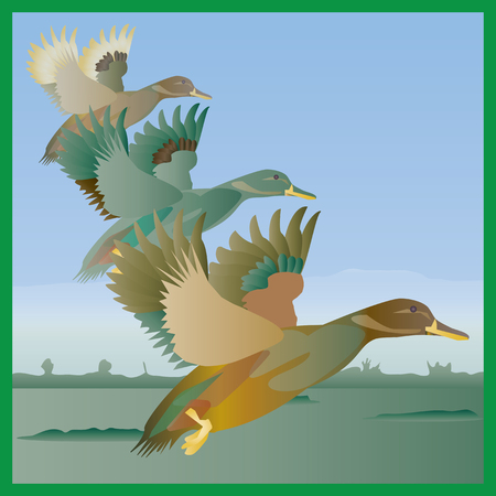 Flying ducks over a wetland marsh in a retro style.