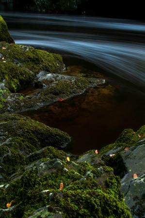 Stream Gently Flows Around Moss Covered Rocks