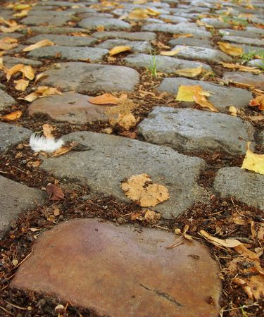 colored cobble stones with autumn leaves and 1 white feather Stock Photo