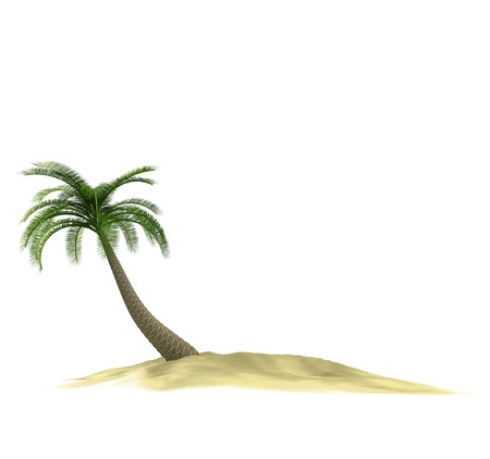 3d render of island with palmtree on white