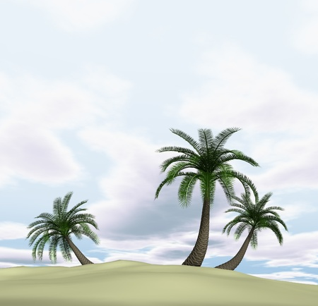3d render of island with palm-trees and cloudy blue sky